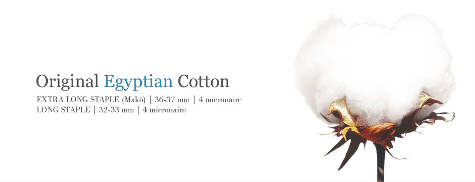 egyptian-cotton